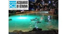 6 GENNAIO 2018 / ACQUARIO DI GENOVA